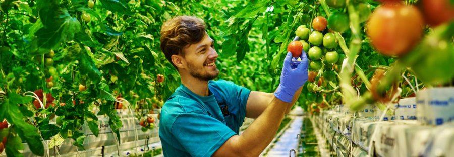 les-metiers-de-l-agriculture-france
